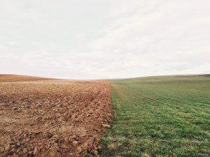 Érdemes időt szánni a talaj megismerésére