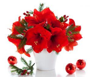 Öngyilkos virágok a vázában